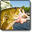 Fishing For Smallmouth And Largemouth Bass