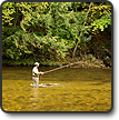 The Basics of Fly Fishing