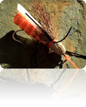 Advanced Fly Fishing Tactics
