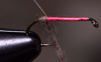 How to Dub a Fly Body