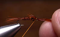 How to Create Legs on a Pheasant Tail Nymph