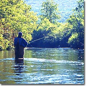 fishingenewsjuly-1