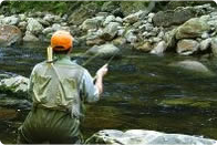 Trout Fly Fishing How To Articles